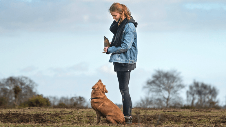 Hiking With Your Dog: An Essential Guide