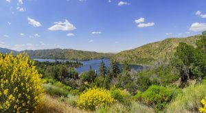 Everything You Need To Know About Silverwood Lake Camping