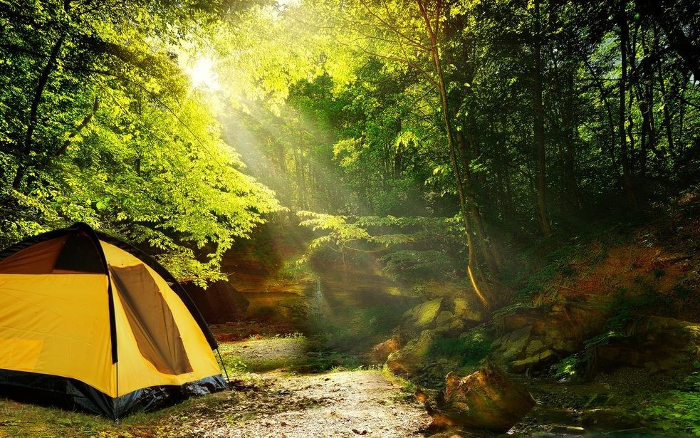 The Best Cabin Tent to Enjoy Camping With Your Friends